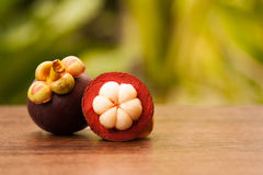 Reine du fruit, du mangoustan entier et de la section transversale montrant W Photo stock