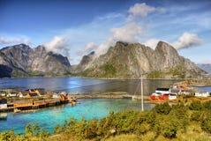 Reine Lofoten wyspy Norwegia Fotografia Stock