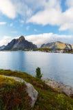 Reine Lofotens öar, Norge Royaltyfri Bild