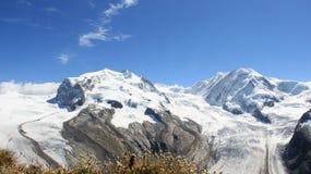 Reine Natur Gletscher-Landschaften mit wilden Blumen in Sunny Day Stockbild