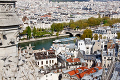 Reine river and Paris old town Stock Image