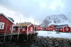 Reine's in winter Royalty Free Stock Photo