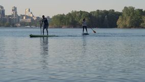 Reine Spekulation, junges Mädchen und Guy Swim auf dem Fluss, der auf den Sups steht stock video footage