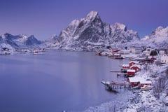Reine sulle isole di Lofoten in Norvegia del Nord nell'inverno Immagini Stock
