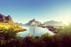 Reine Village, Lofoten Islands, Norway Royalty Free Stock Photo