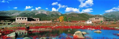 Reine Welt in Tibet Stockbild
