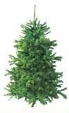 Reiner grüner Tannen-Weihnachtsbaum auf Weiß Lizenzfreie Stockfotos