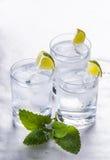 Reines Mineralwasser mit Eis und Zitrone Stockfotos