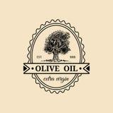 Reines Olivenöllogo der Vektorweinlese besonders Retro- Emblem mit Baum Hand skizzierte ländliches Zeichen der landwirtschaftlich Lizenzfreies Stockbild