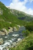 Reines Wasser mit Fluss-Steinen Lizenzfreie Stockfotos