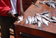 Reinigingsmachine van vissen bij de markt van Pomerini in Tanzania, Afrika 72 Stock Foto's