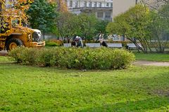 Reinigung von Blättern im Park Lizenzfreies Stockbild