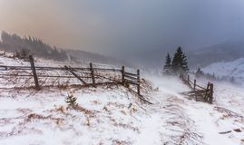 Reinigungs-Schnee-Sturm in Rocky Mountains Stockbilder