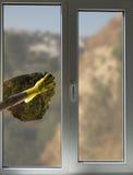 Reinigungsfenster Lizenzfreie Stockbilder