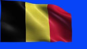 Reino de Bélgica, bandera de Bélgica - LAZO ilustración del vector