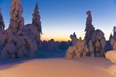 Reino de la nieve Foto de archivo libre de regalías