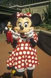 Reino mágico - ratón de Minnie con Mickey Mouse Fotos de archivo