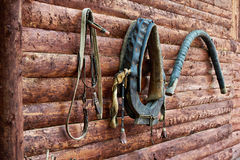 Reins for horse, harness, collar in village house Royalty Free Stock Photography