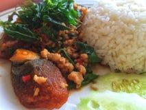 Reis überstieg mit angebratenem Jahrhunderteischweinefleisch und -basilikum Lizenzfreie Stockfotos