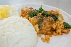 Reis überstiegen mit angebratenem Huhn und Basilikum Stockbild