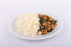 Reis überstiegen mit angebratenem Huhn und Basilikum, gebratener Aufruhrbasilikum mit gehacktem Huhn auf weißem Hintergrund Stockfotos
