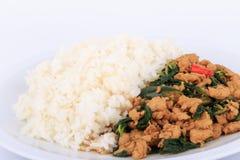 Reis überstiegen mit angebratenem Huhn und Basilikum, gebratener Aufruhrbasilikum mit gehacktem Huhn auf weißem Hintergrund Lizenzfreie Stockfotografie