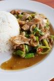 Reis überstiegen mit gebratenem Schweinefleisch und Basilikum Lizenzfreie Stockfotografie