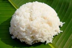 Reis lizenzfreie stockbilder