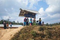 Reis Stock Fotografie