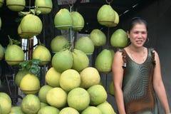 Reis aan Azië: Pamela stock fotografie