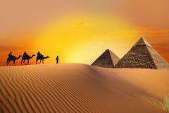 Reis aan de piramides stock foto's