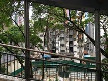 Reis aan Hongkong Stock Foto