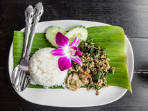 Reis angebratenes Schweinefleisch und Basilikum Stockbild