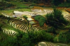 Reis archivierte Ansicht lizenzfreie stockbilder