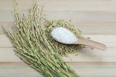 Reis auf hölzernem Hintergrund Stockfotos