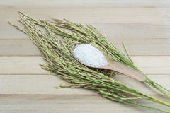 Reis auf hölzernem Hintergrund Stockbild