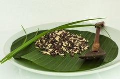 Reis auf Scheibe Stockbild