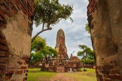 Reis in ayutthaya oude stad Royalty-vrije Stock Fotografie