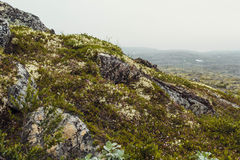 Reis in bergen Royalty-vrije Stock Foto's
