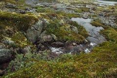 Reis in bergen Royalty-vrije Stock Afbeeldingen