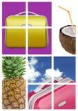 Reis comp met fruit Stock Afbeelding