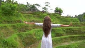reis concept Vrouw die in lange kleding dichtbij rijstterras de lopen en heft handen op stock videobeelden
