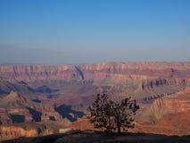Reis in de V.S. Grand Canyon Royalty-vrije Stock Foto