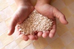 Reis in den Händen Stockbild