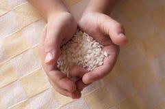 Reis in den Händen Lizenzfreie Stockfotografie