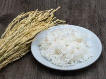 Reis in der weißen Platte auf Holztisch lizenzfreie stockfotografie