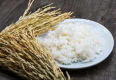 Reis in der weißen Platte auf Holztisch stockbilder