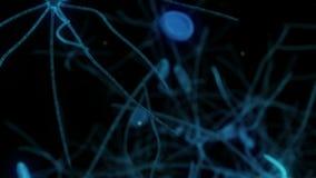 Reis door menselijk neuronenweefsel vector illustratie