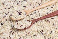 Reis in einem hölzernen Löffel Lizenzfreies Stockfoto