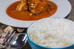 Reis in einer Schüssel Lizenzfreies Stockfoto